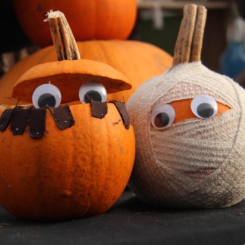 kenyon-hall-farm-pumpkins-the-guide-liverpool